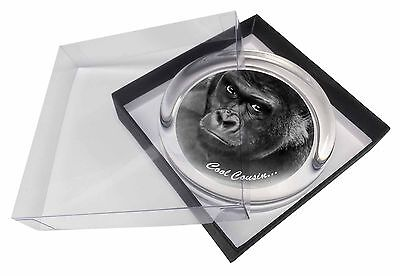 Gorilla 'Cool Cousin' Sentiment Glass Paperweight in Gift Box Christmas, AM-18PW