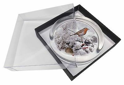 Snow Mouse and Robin Print Glass Paperweight in Gift Box Christmas Pres, AMO-5PW