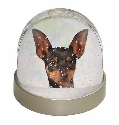 English Toy Terrier Dog Photo Snow Dome Waterball Stocking Filler Gift, AD-ET1GL