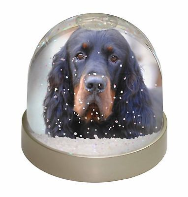Gordon Setter Dog Photo Snow Dome Waterball Stocking Filler Gift, AD-GOR2GL