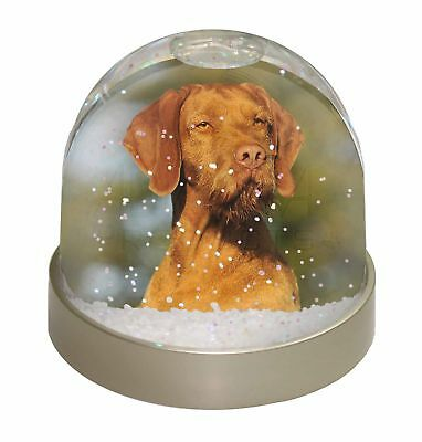Hungarian Vizsla Wirehaired Dog Photo Snow Dome Waterball Stocking Fi, AD-HWV1GL