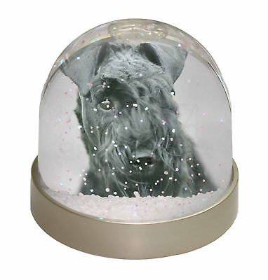 Kerry Blue Terrier Dog Photo Snow Dome Waterball Stocking Filler Gift, AD-KB1GL