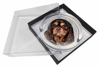 King Charles Dog 'Love You Dad' Glass Paperweight in Gift Box Christm, DAD-111PW