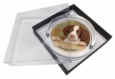 Springer Spaniel 'Love You Dad' Glass Paperweight in Gift Box Christm, DAD-119PW
