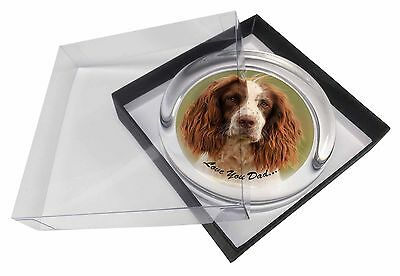 Springer Spaniel 'Love You Dad' Glass Paperweight in Gift Box Christm, DAD-120PW