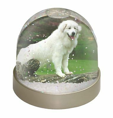 Pyrenean Mountain Dog Photo Snow Globe Waterball Stocking Filler Gift, AD-PM1GL