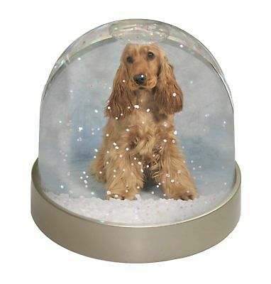 Red/Gold Cocker Spaniel Dog Photo Snow Dome Waterball Stocking Filler , AD-SC6GL