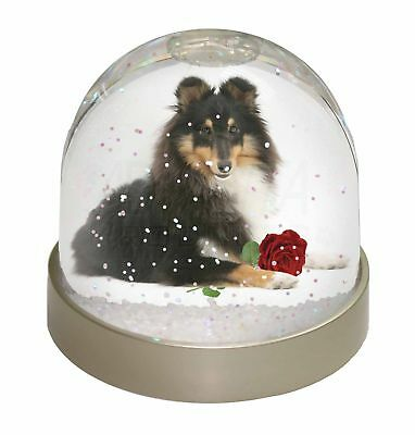 Tri-Col Sheltie with Red Rose Photo Snow Dome Waterball Stocking Fill, AD-SE1RGL