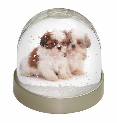 Shih-Tzu Dog Photo Snow Dome Waterball Stocking Filler Gift, AD-SZ2GL