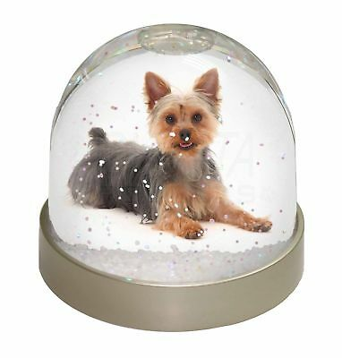 Yorkshire Terrier Dog Photo Snow Dome Waterball Stocking Filler Gift, AD-Y4GL