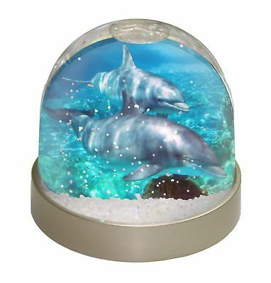 Dolphins Photo Snow Dome Waterball Stocking Filler Gift, AF-D3GL