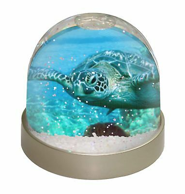 Turtle by Coral Photo Snow Dome Waterball Stocking Filler Gift, AF-T20GL