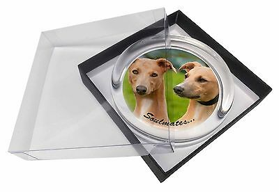Whippet Dogs 'Soulmates' Sentiment Glass Paperweight in Gift Box Chri, SOUL-64PW