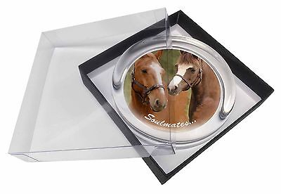 Horses 'Soulmates' Sentiment Glass Paperweight in Gift Box Christmas , SOUL-69PW