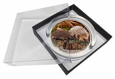 Hedgehogs 'Soulmates' Sentiment Glass Paperweight in Gift Box Christm, SOUL-70PW