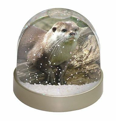 River Otter Photo Snow Dome Waterball Stocking Filler Gift, AO-2GL