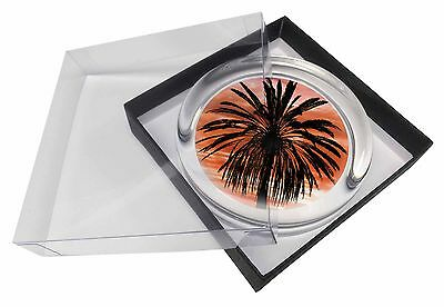 Tropical Palm Sunset Glass Paperweight in Gift Box Christmas Present, SUN-3PW