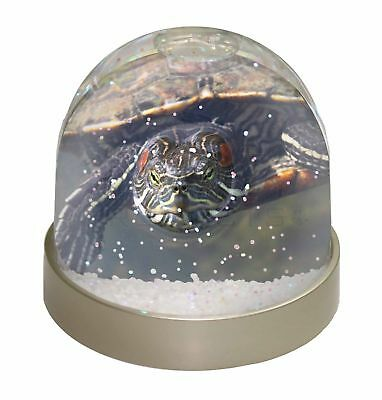 Terrapin Intrigued by Camera Photo Snow Dome Waterball Stocking Filler , AR-T1GL