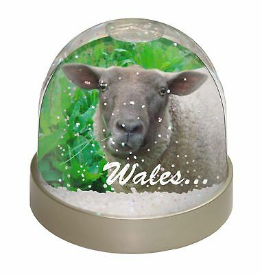 Sheep /'Wales/' Wording Welsh Gift Glass Paperweight in Gift Box Christm ASH-3WPW