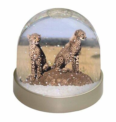 Cheetahs on Watch Photo Snow Dome Waterball Stocking Filler Gift, AT-25GL