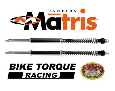 Matris Fork Cartridge Upgrade Kit for Marzocchi M1R 41.7mm Forks