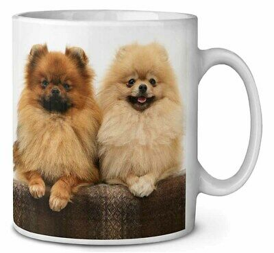 Pomeranian Dogs Coffee/Tea Mug Christmas Stocking Filler Gift Idea, AD-PO91MG