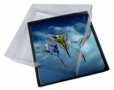 4x Budgies in Flight Picture Table Coasters Set in Gift Box, AB-96C