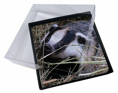 4x Badger in Straw Picture Table Coasters Set in Gift Box, ABA-1C