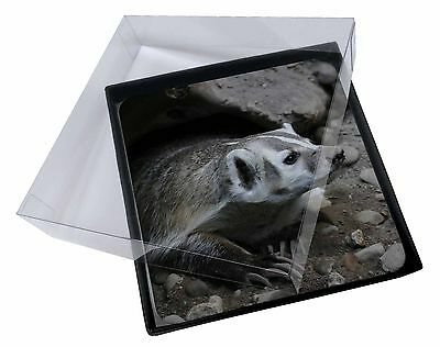 4x Badger on Watch Picture Table Coasters Set in Gift Box, ABA-2C
