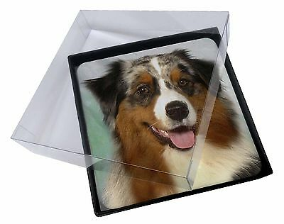 4x Australian Shepherd Dog Picture Table Coasters Set in Gift Box, AD-AS1C