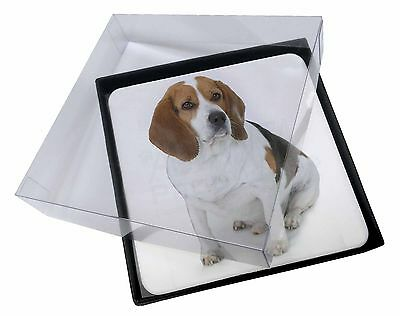 4x Beagle Dog Picture Table Coasters Set in Gift Box, AD-BEA4C
