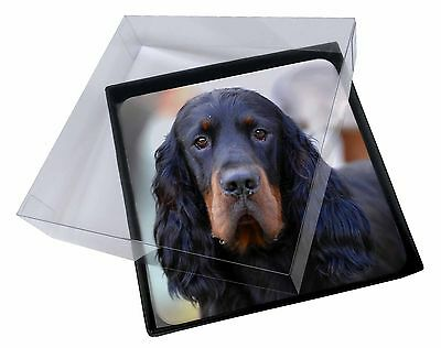 4x Gordon Setter Dog Picture Table Coasters Set in Gift Box, AD-GOR2C