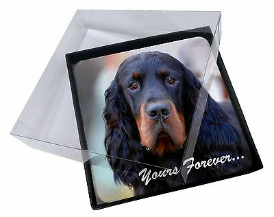 4x Gordon Setter 'Yours Forever' Picture Table Coasters Set in Gift B, AD-GOR2yC