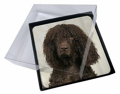 4x Irish Water Spaniel Dog Picture Table Coasters Set in Gift Box, AD-IWSC