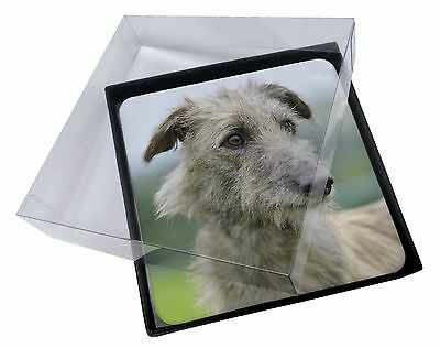 4x Rough Coated Lurcher Picture Table Coasters Set in Gift Box, AD-LU6C