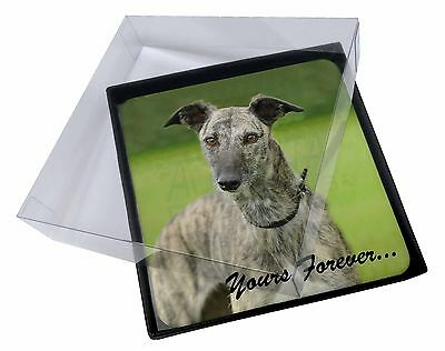 4x Greyhound Dog 'Yours Forever' Picture Table Coasters Set in Gift Bo, AD-LU7yC