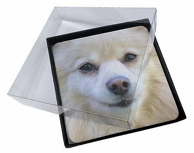 4x Japanese Spitz Dog Picture Table Coasters Set in Gift Box, AD-PA61C