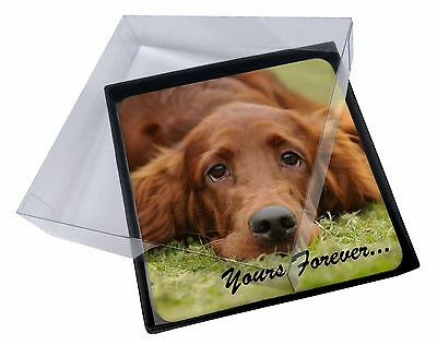 4x Red Setter Dog 'Yours Forever' Picture Table Coasters Set in Gift B, AD-RS2yC
