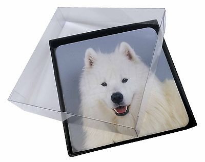4x Samoyed Dog Picture Table Coasters Set in Gift Box, AD-SO76C