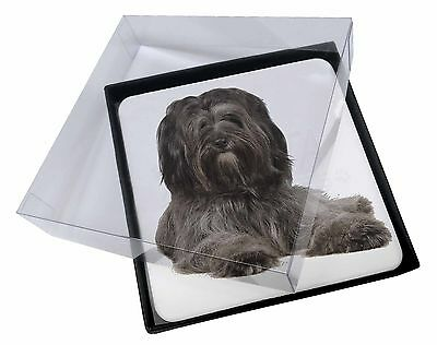4x Tibetan Terrier Dog Picture Table Coasters Set in Gift Box, AD-TT2C