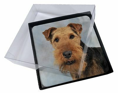 4x Welsh Terrier Dog Picture Table Coasters Set in Gift Box, AD-WT1C