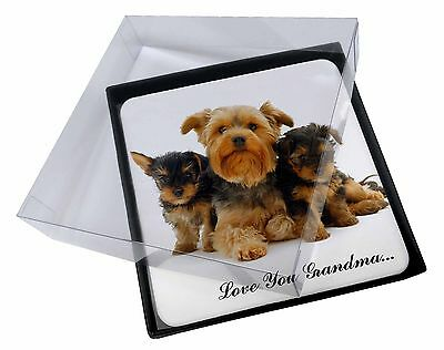 4x Yorkshire Terriers 'Love You Grandma' Picture Table Coasters Set i, AD-Y3lygC