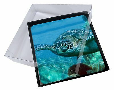 4x Turtle by Coral Picture Table Coasters Set in Gift Box, AF-T20C