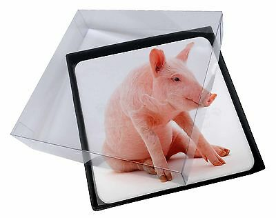 4x Cute Pink Pig Picture Table Coasters Set in Gift Box, AP-20C