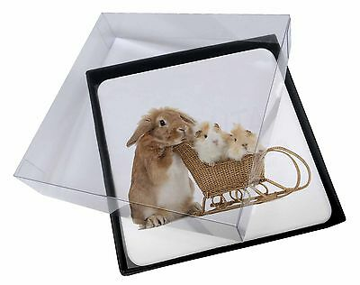 4x Rabbit and Guinea Pigs Picture Table Coasters Set in Gift Box, AR-12C