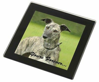 Greyhound Dog 'Yours Forever' Black Rim Glass Coaster Animal Breed Gi, AD-LU7yGC