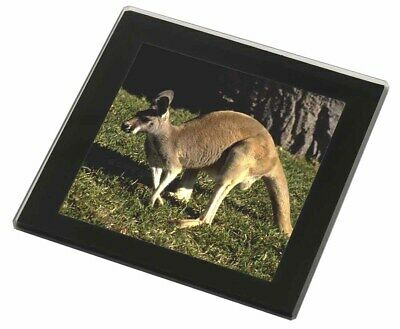 Kangaroo Black Rim Glass Coaster Animal Breed Gift, AK-2GC