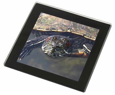 Terrapin Intrigued by Camera Black Rim Glass Coaster Animal Breed Gift, AR-T1GC