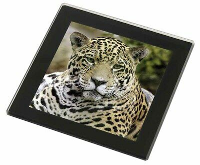 Leopard Black Rim Glass Coaster Animal Breed Gift, AT-38GC