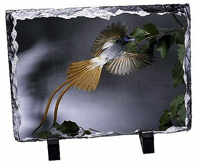 Humming Bird Photo Slate Christmas Gift Ornament, AB-91SL